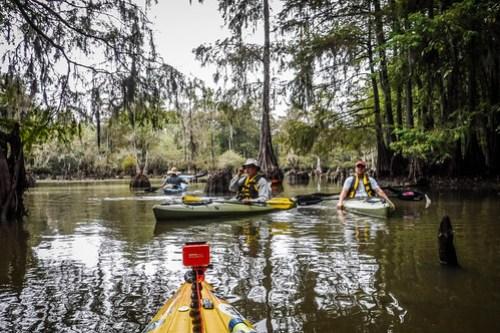 Sparkleberry Swamp with LCU-76