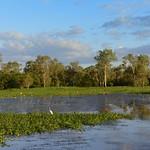 02 Viajefilos en Australia, Kakadu NP 096