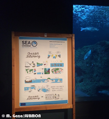Poster SeaChange project