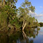 02 Viajefilos en Australia, Kakadu NP 088