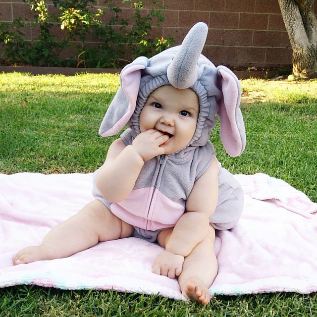 The best thing about the first Halloween is that you get to pick out the costume. I picked out an elephant costume because 1) her name is Ellie Finn...say that three times fast, and 2) those legs! :-) #elliefinn