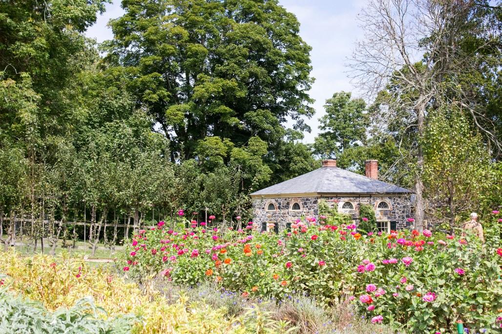 hagley-garden-food-tour-office-garden