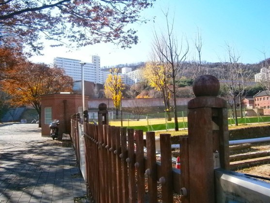 Fall at Yonsei University