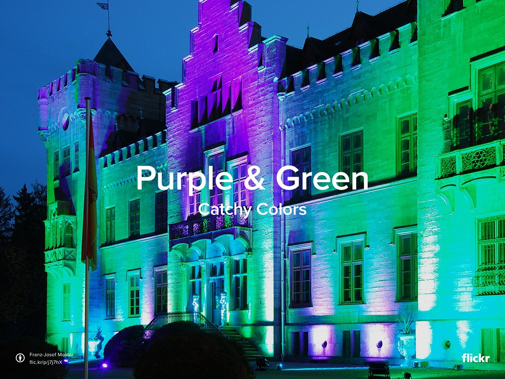 Catchy Colors Purple Amp Green