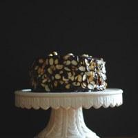 Chocolate Espresso Dacquoise - lactose free