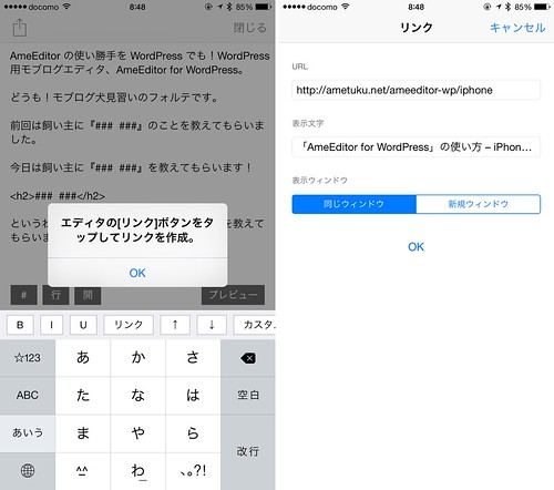 AmeEditor for WordPress_リンク
