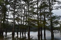 059 Chisholm Lake