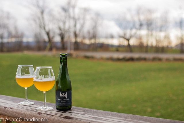Hill Farmstead Leaves of Grass - July 16th, 2015