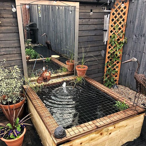 Today is all about...the pond is now finished