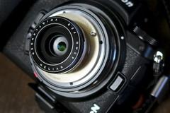 Nikon Z6 + Voigtländer Heliar 40mm F2.8