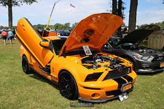 American Muscle Mustang Show 2019_016