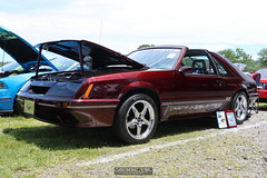 American Muscle Mustang Show 2019_135