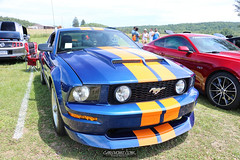 American Muscle Mustang Show 2019_130