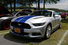 American Muscle Mustang Show 2019_051