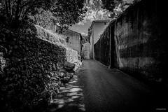 Belgentier / Var / France