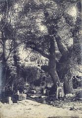 Mouriès - Août 1902