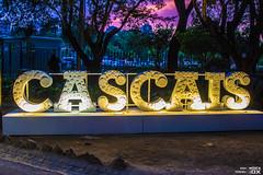 20190709 - Ambiente   EDPCoolJazz'19 @ Hipódromo Manuel Possolo (Cascais)