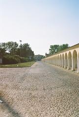 patterns of Comacchio