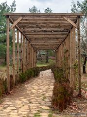 Kapıçam Botanik Tabiat Parkı