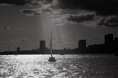 Monochrome Sailboat