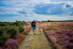 Daddy and Daughter on the Heath