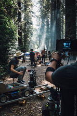Set de Bosque