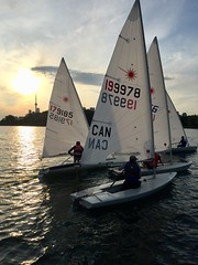 Evening Laser race in the Outer Harbour, Toronto