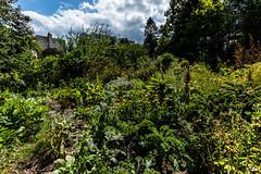 #11 Jardin de Neptune / Août 2019