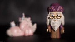 Albus Dumbledore and a Sleeping Unicorn