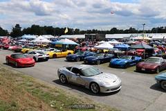 Corvettes_at_ Carlisle_20190824_0086