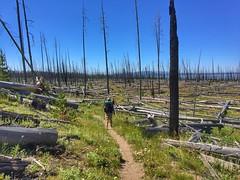 Day 1: At the start of the Thorofare Trail (Nine Mile Trailhead)