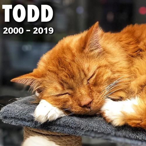 Today is all about...RIP Todd