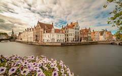 spinolarei Brugge