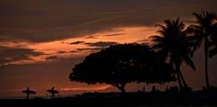 waikiki sundown