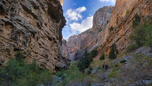 Tamerlan canyon
