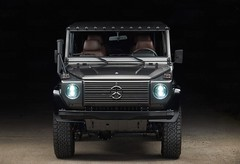 Expedition-Motor-Company-Silver-Wolf-Front-View-Black-Background
