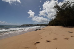 Remote Kauai Beach