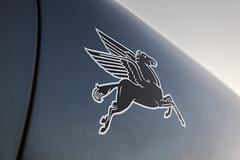 Emory-Transitional-Speedster-Pegasus-Close-Up