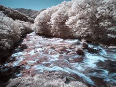 日光 竜頭の滝  Nikkon Ryutonotaki