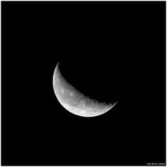The Moon (last Quarter)