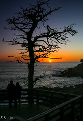 Sunset in Monterey California