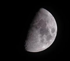 Luna 8° Giorno