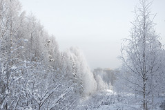 """wintery • <a style=""""font-size:0.8em;"""" href=""""http://www.flickr.com/photos/95715523@N05/49029560561/"""" target=""""_blank"""">View on Flickr</a>"""