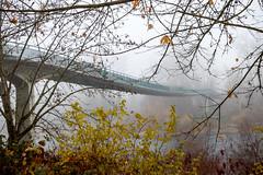 Reinhart Park Footbridge