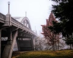 Caveman Bridge over the Rogue River