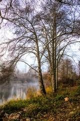Applegate River Fall