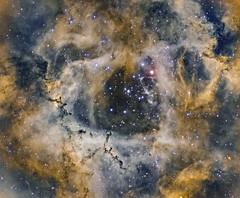 Rosetta Nebula HOO (Synthetic SHO view)