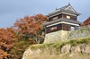 Photo:Ueda Castle By