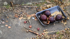 Offering or Tribute of Pennies and Plums