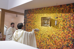 """Te Deum - Bendición Sagrario • <a style=""""font-size:0.8em;"""" href=""""http://www.flickr.com/photos/120415644@N05/49309032768/"""" target=""""_blank"""">View on Flickr</a>"""
